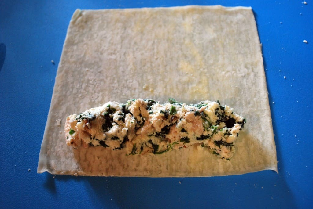 Chicken Cannelloni Roll