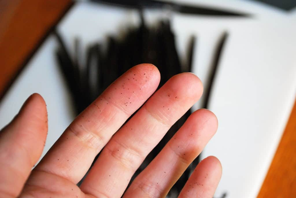 Vanilla Bean Fingers