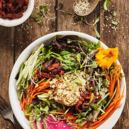High Protein Fresh Vegan Salad with Hummus